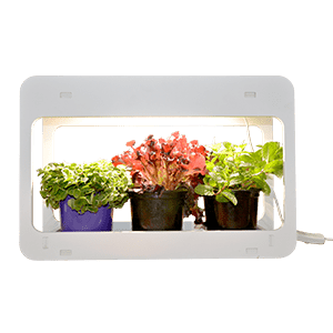 FLOURISH INDOOR GARDEN UNIT LED 14W 4-14